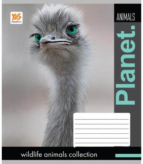 А5 / 48 кл. YES гібрид з 2-м вибірками Wildlife animals-17, зошит
