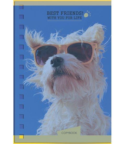 Зошит В6 / 144 пл.обл. Human friends. Dog YES