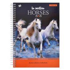 Зошит А5/80 од.спіраль Horses YES