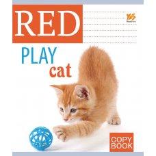 А5 / 18 кл. YES УФвиб. Red cat-17, зошит