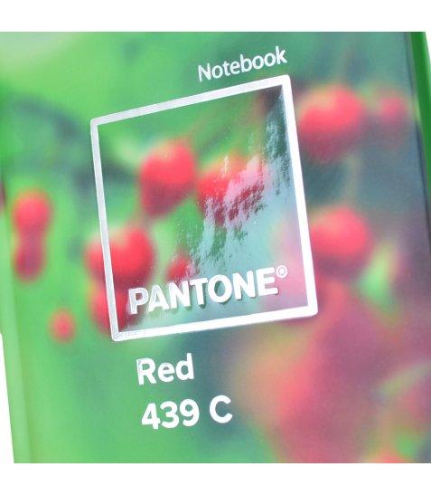 """Блокнот 100 * 200/64 7БЦ, фольга срібло, УФ вибірка, мат.ламінація """"Pantones"""" YES"""