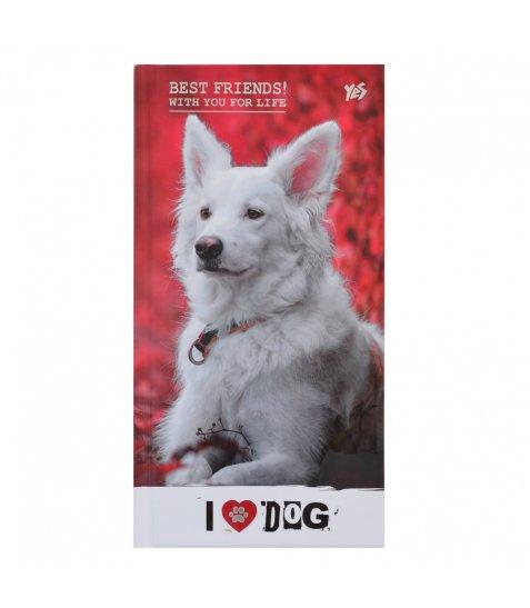 """Блокнот 100 * 200/64 7БЦ, фольга срібло, УФ вибірка, мат.ламінація """"Cool pets"""" YES"""