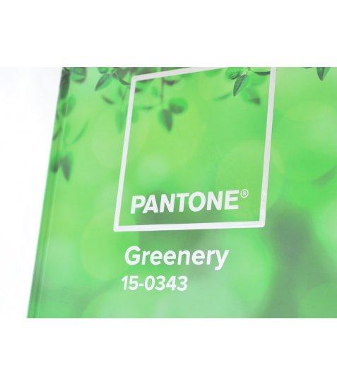 "Блокнот А4 / 160 7БЦ, фольга срібло, УФ вибірка, мат.ламінація ""Pantones"" YES"