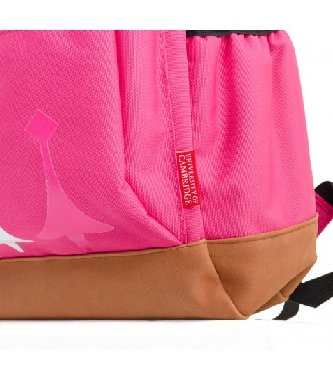 Рюкзак для підлітків YES  CA 083, рожевий, 29*47*17