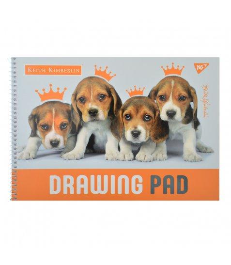 """Альбом для малювання А4 20л / 100 """"Cute animals"""" на спіралі мат.лам + УФ-виб YES"""
