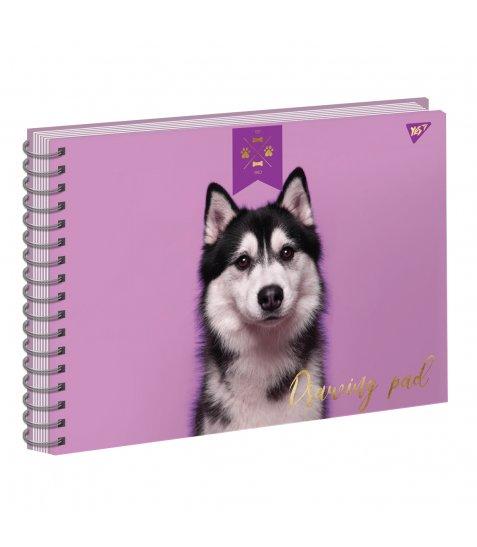 """Альбом для малювання А4 20л/100 """"ELEGANT DOG"""" на спіралі фольга золото+софт-тач+УФ-виб. YE"""