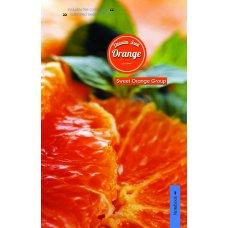 Зошит А4/144 пл.обл. Fruit fiesta YES