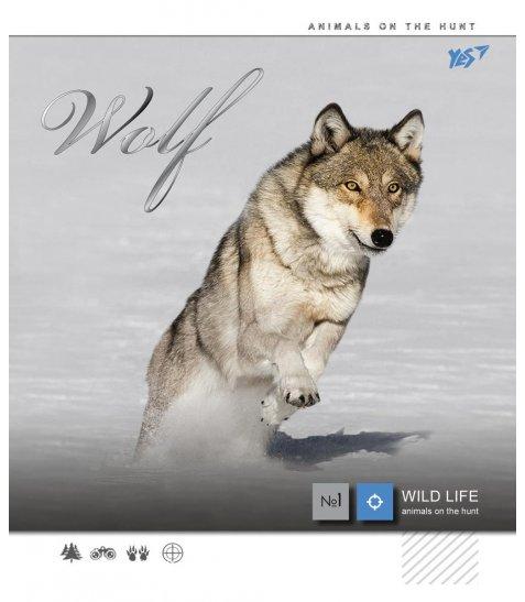 А5 / 12 лін. YES фольга срібло + УФ-виб Wild force, зошит