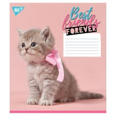 А5/36 square YES BEST FRIENDS, copybook