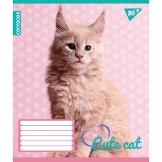 А5/18 лін. YES CUTE CAT, зошит учнів.