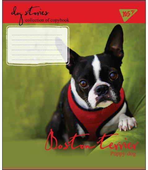 А5/24 лін. YES DOG STORIES, зошит учнів.