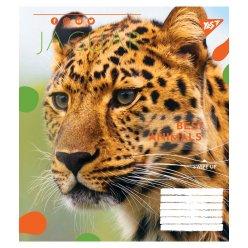Зошит А5 36 Лін. YES Animal