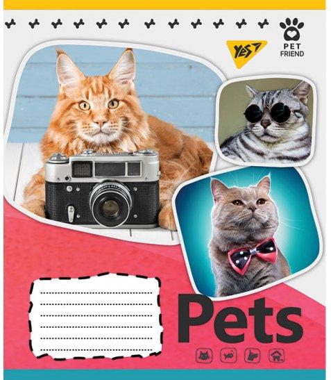 А5/18 лін. YES Pets shoot, зошит учнів.