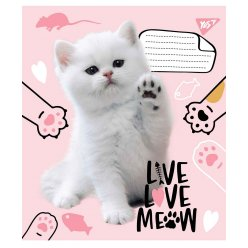 Зошит А5 12 Кос. без д/л YES Live Love Meow