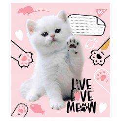 А5/18 лін. YES Live love meow, зошит учнів.